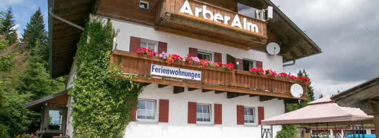 Arber - Alm